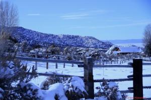Belmont View